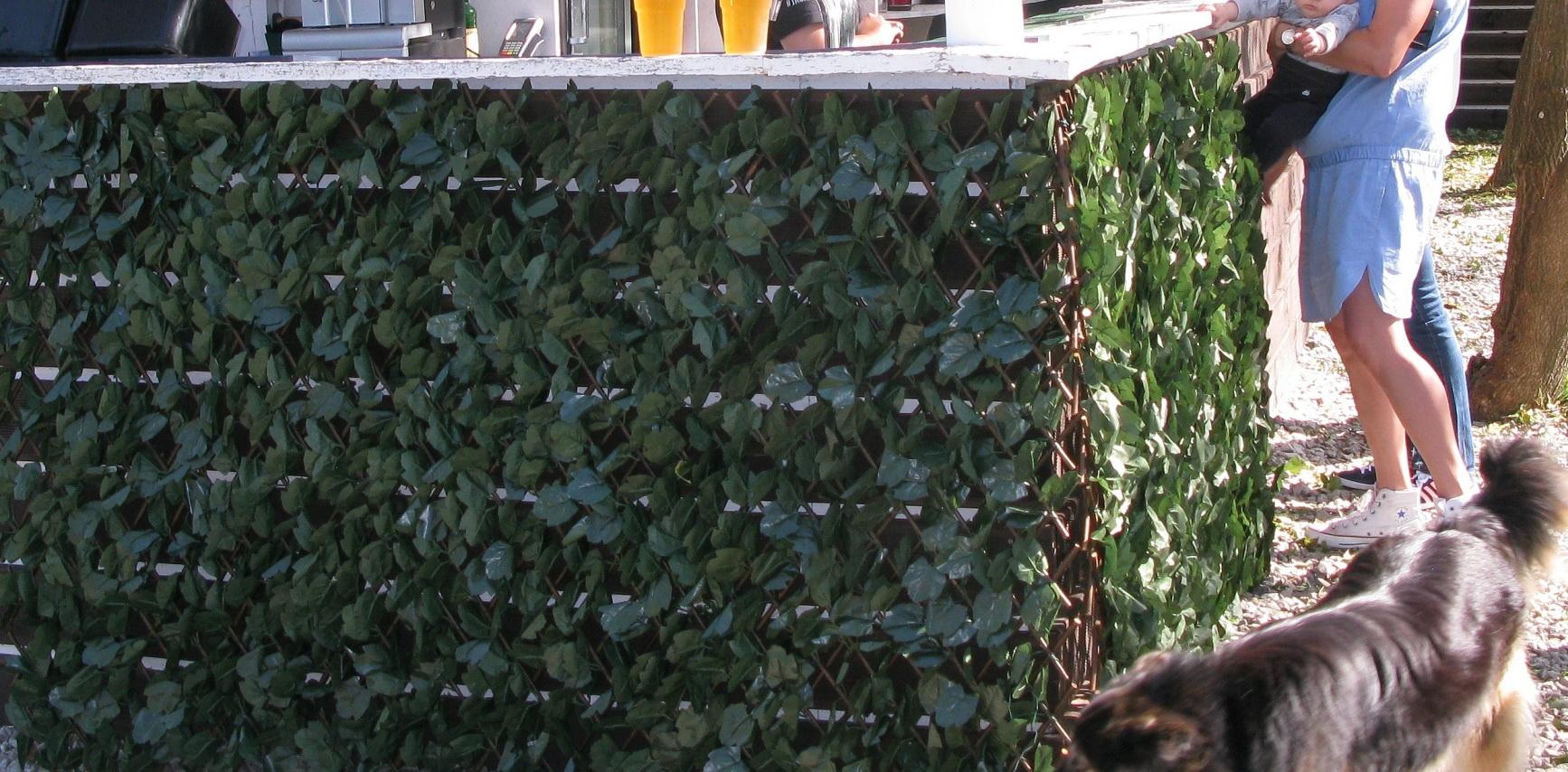 Umělé živé ploty na dřevěném rastru