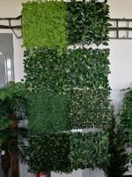 showroom umělé rostliny